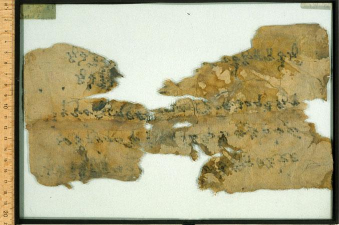THT 461 Verso
