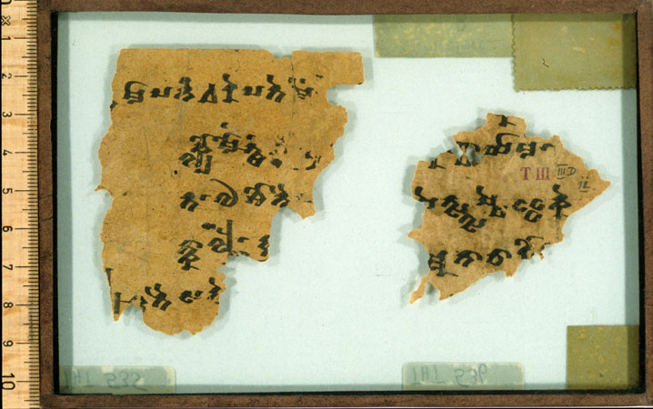 THT 535 Verso
