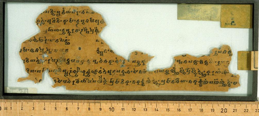 THT 541 Verso