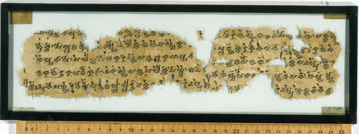 THT 597 Verso